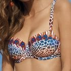 Bikini-13760