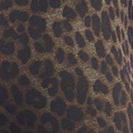 Leopard leo
