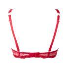 Back image of Lise Charmel Soir De Venise Glam Push Up Bra In Red