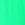 Turquoise melisa